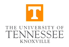 University of Tennessee - School of Art (United States)