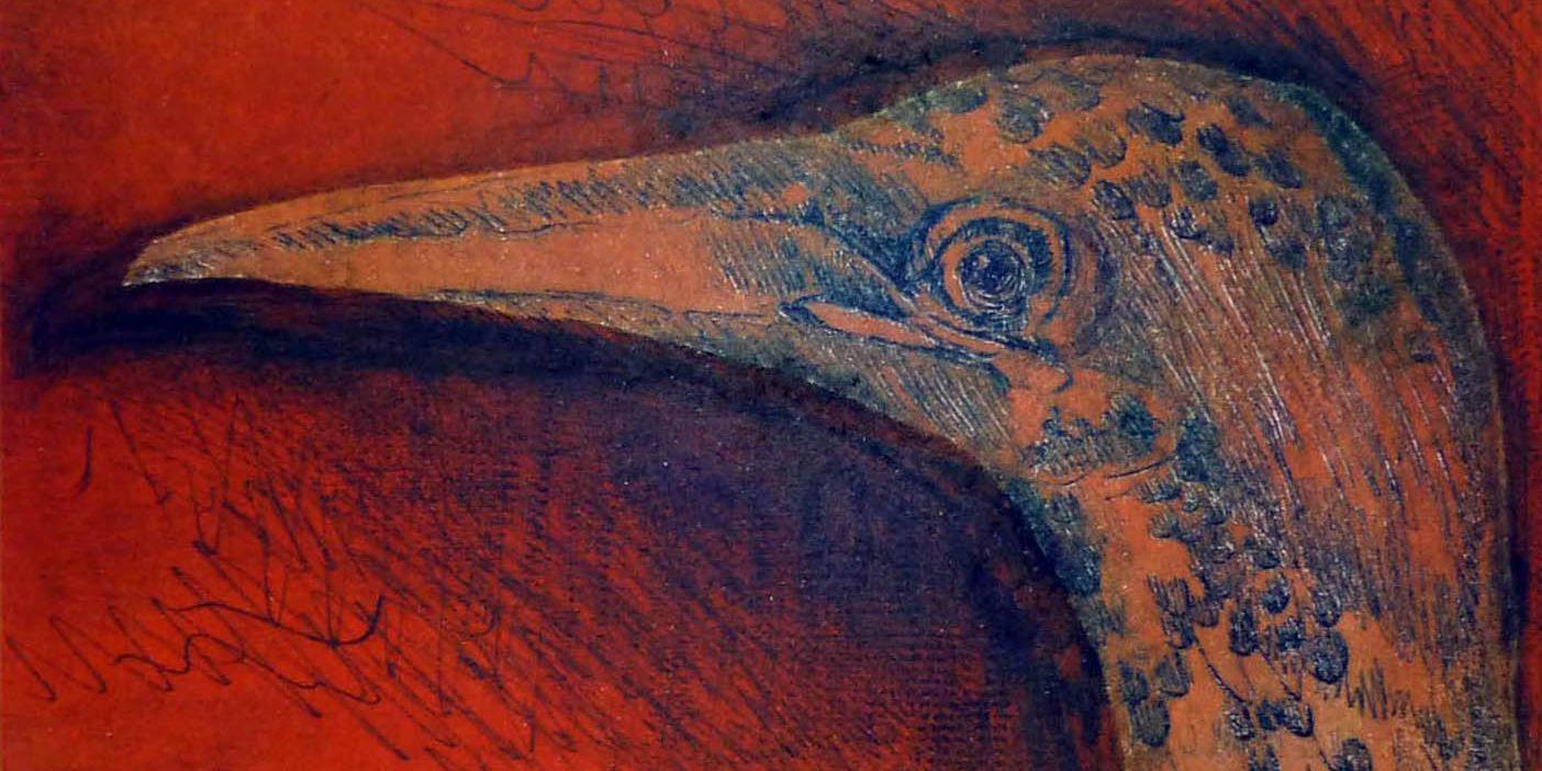 intagbird01
